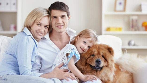 Wills & Trusts dog-young-family Direct Wills Whitstable